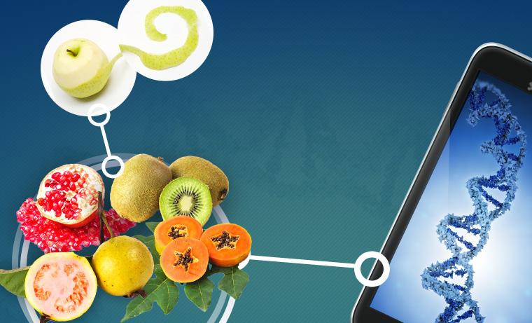 III Konferencja Naukowa z cyklu Mity i Rzeczywistość XXI wieku - Żywność Genetycznie Modyfikowana GMO